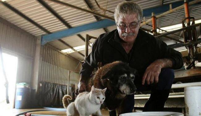 Homem e cadela mais velha do mundo