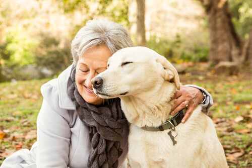 Convivência entre idosos e cães: como isso afeta a saúde