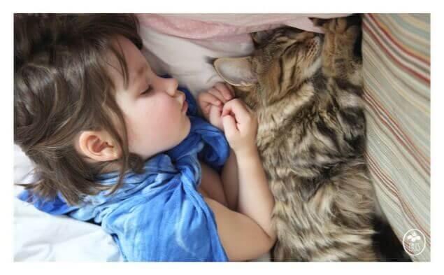 criança autista e gato