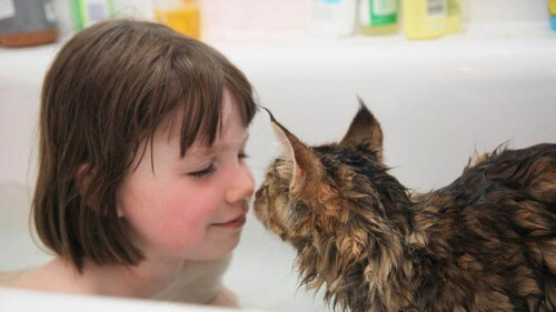 Criança autista e seu gato