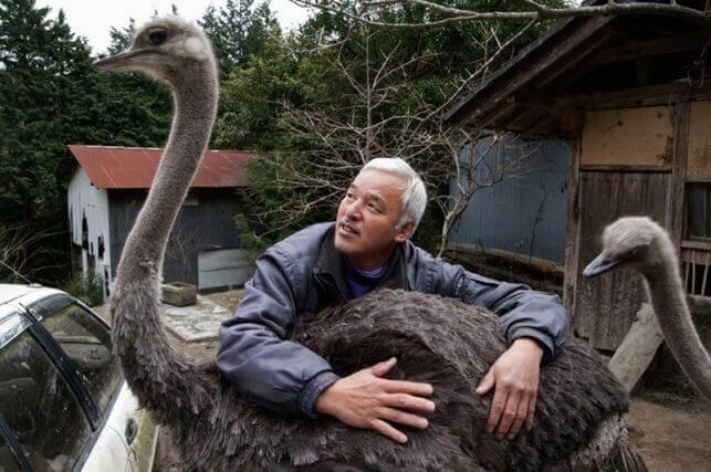 Naoto com avestruz