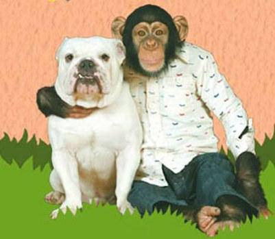 macaco-Pankun-3