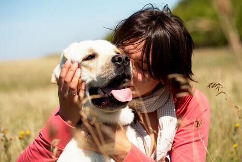os-cães-odeiam-os-abraços