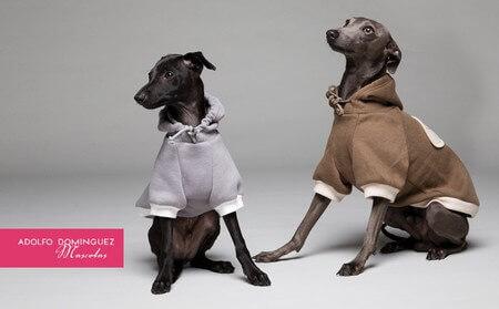 Adolfo Domínguez lança uma coleção para cães