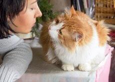 mulher_com_gato