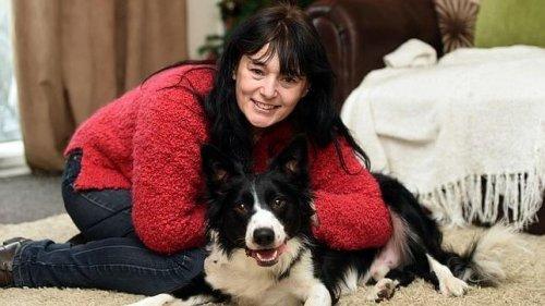 Um cachorro detecta um câncer de mama na sua dona