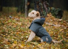 casaco impermeável
