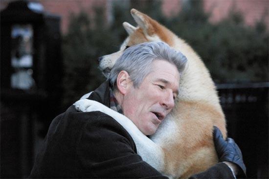 10 títulos de filmes inesquecíveis sobre cães