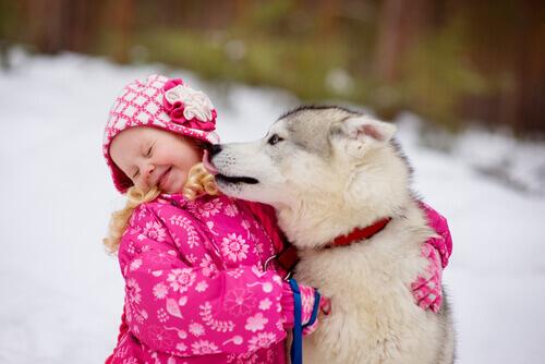 cao-quer-beijar-a-cara-de-uma-crianca