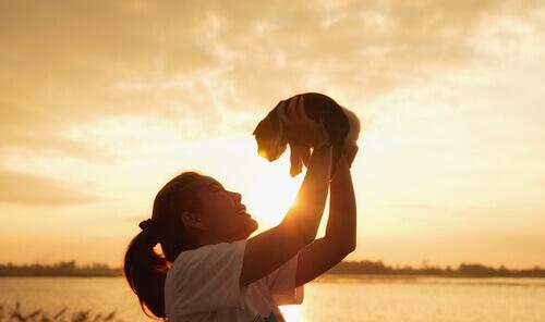 enterrar donos e animais de estimação juntos