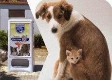 maquinas-destribuidoras-de-comida-para-animais