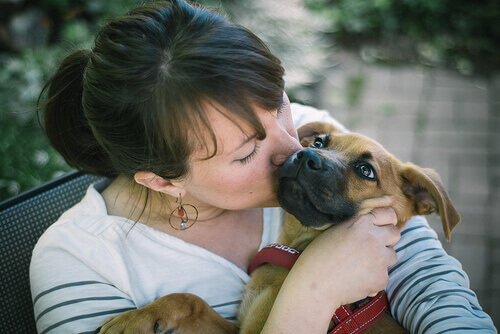 mulher-beijando-um-cao