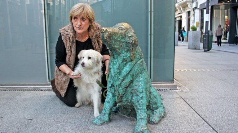 Ney, um cão que conquistou toda uma cidade da Espanha