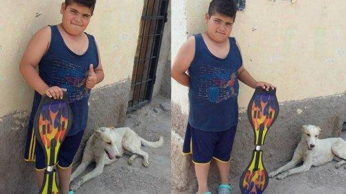 Uma criança vende seu patinete para comprar remédios para um cão de rua