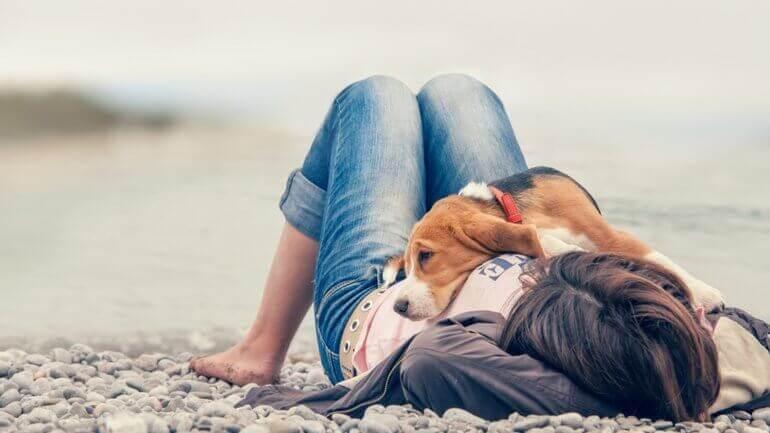 Cachorro deitado sobre a dona na praia
