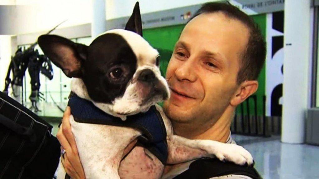 Um piloto de avião salva a vida de um cachorro