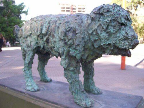 Estátua do cão Fernando, na Argentina, imortalizado por Fernando Cortez