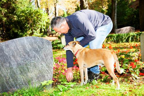 Dono e seu cão visitando túmulo no cemitério