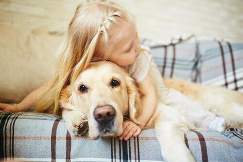 Menina loira abraçando um cão Labrador