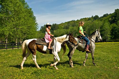 Meninas andando de cavalo