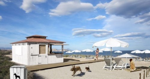 Cachorros correndo na praia