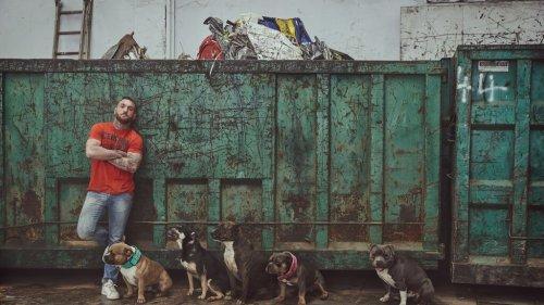 """""""Um rosto de cachorro"""", um programa de TV que mostra a crueldade com os animais"""