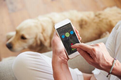 Mulher com smartphone para cães
