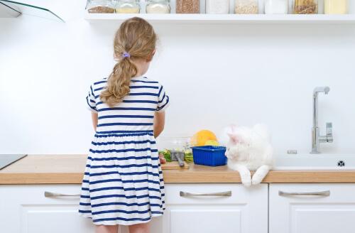 Menina cozinhando com gato branco sobre o balcão