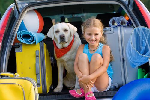 Cachorro e menina na mala de um carro