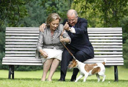 Conheça os cães da realeza europeia