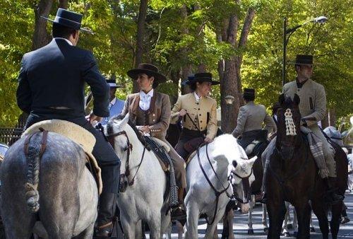 Cavalo de raça pura espanhola ou cavalo andaluz