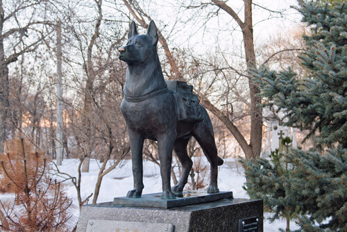 Estátua em homenagem a um cão de busca e salvamento