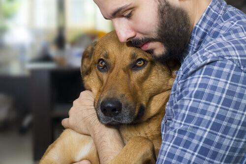 Homem abraçando seu cachorro
