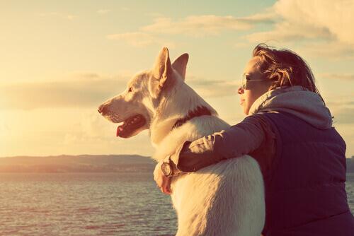 Dona abraçada com seu cachorro durante o pôr do sol