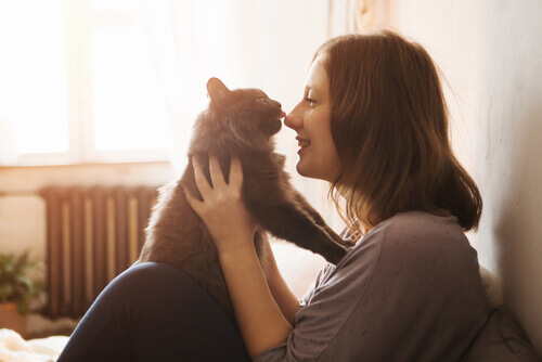 confiança entre gato e dona