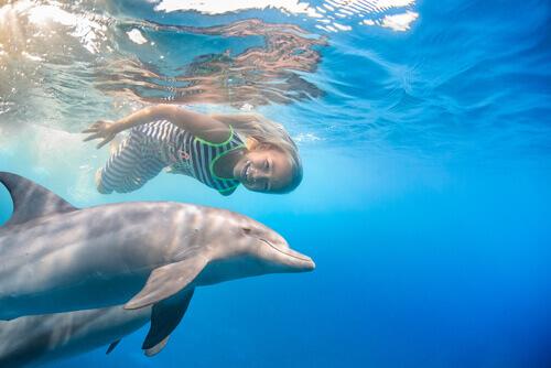 Menina nadando com golfinho