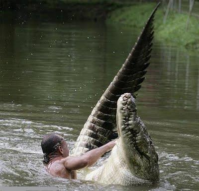 Gilberto e Pocho brincando na água