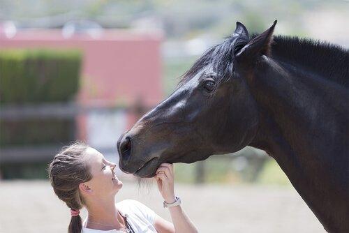 Menina com cavalo