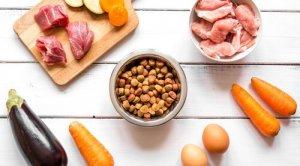 misturar ração e comida caseira