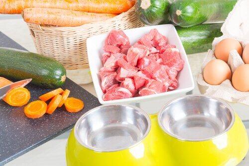 Dieta natural para cachorro