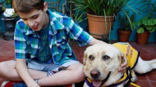 menino cego com cão-guia
