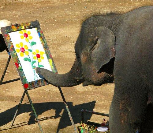 elefante pintando