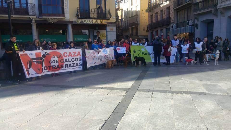 Manifestação contra maus-tratos