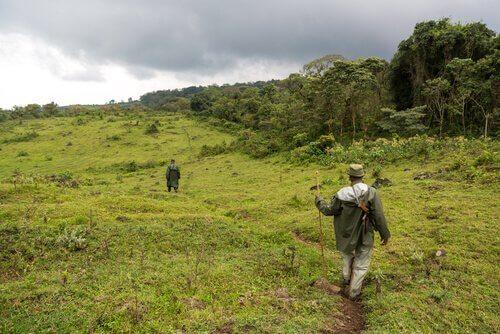 Guardas no parque nacional de virunga