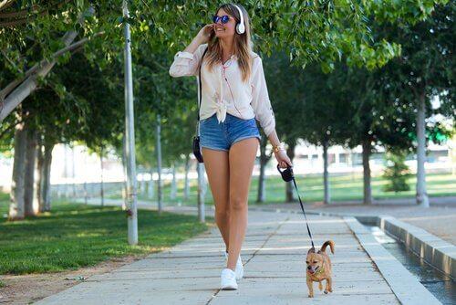 Cinco razões pelas quais seu cão merece passeios de qualidade