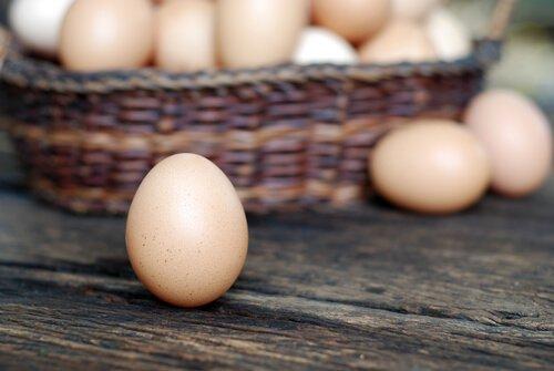 Cesta de ovos de galinha
