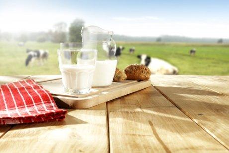 Tipos de leite de acordo com o seu tratamento