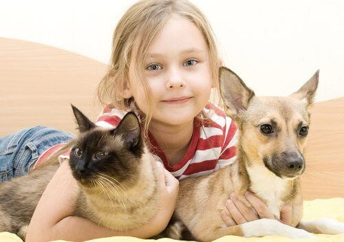 Menina, cão e gato