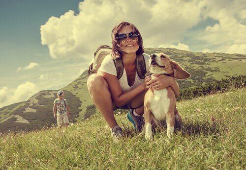 5 destinos europeus para viajar com o seu cão
