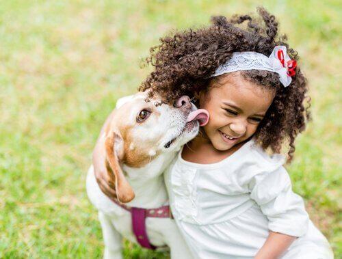 Como a interação das crianças com os cães deve ser